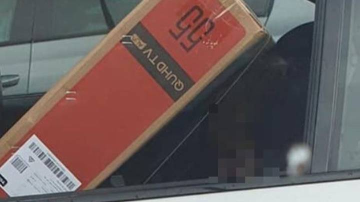 Driver Slammed For Squishing Flat Screen TV On Top Of Child In Car