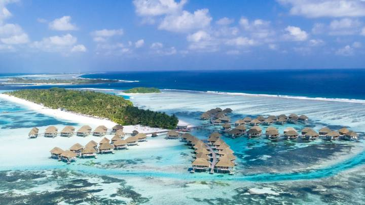 Maldives Resort Offering Someone The Chance To Look After Their Turtles