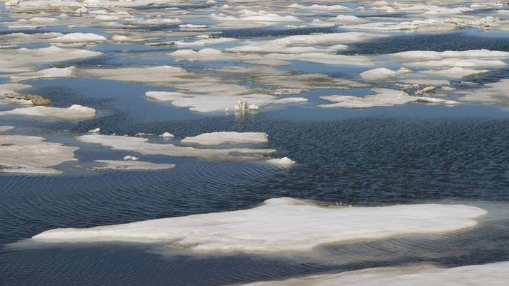 Arctic Sea Ice Declines To Second Lowest Level On Record