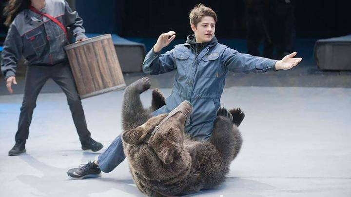 Circus Trainer Killed By Bear After He 'Forgot To Take Off' Coronavirus Mask