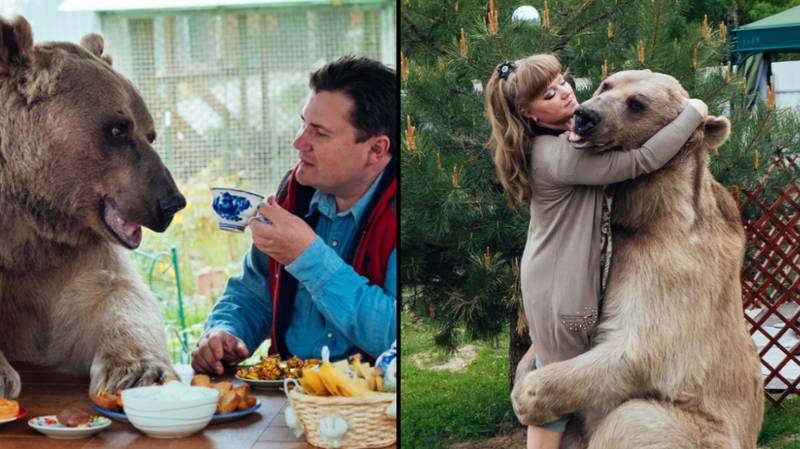 Russian Couple Keep Bear As Pet Because They Have No Fear Of Death