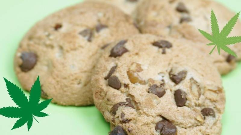 Six Women Called Triple Zero After Getting Too High Off Weed Cookies