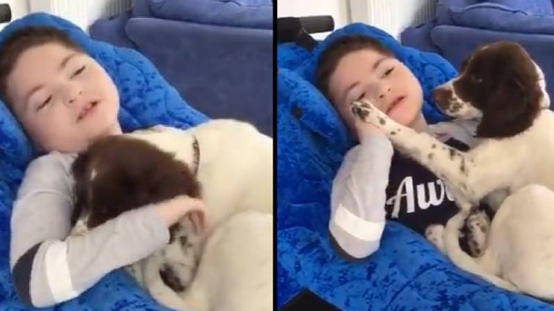 Mum Buys Puppy For Disabled Son And They Quickly Become Best Friends