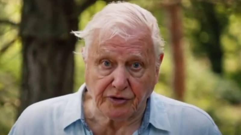 David Attenborough Warns Our Planet Is 'Facing A Crisis'