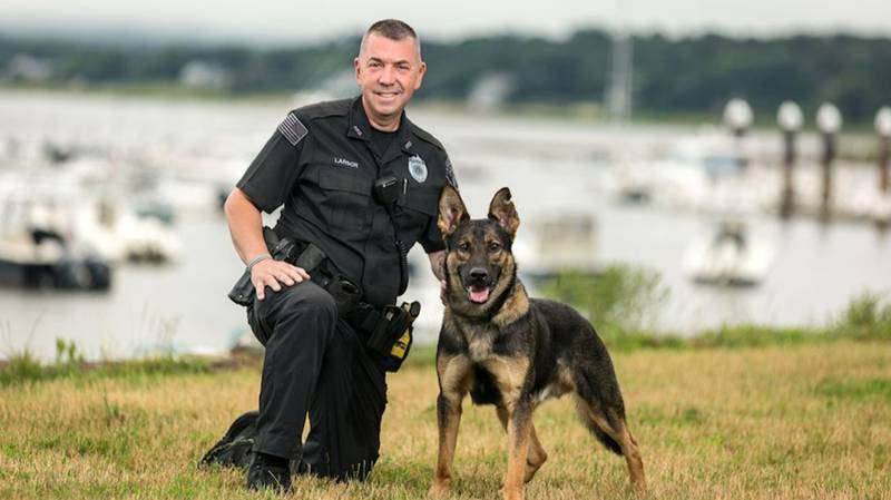Police Officer Forced To Shoot His Own Police Dog At Crime Scene