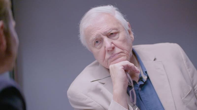 Sir David Attenborough Reveals The Most Upsetting Thing He's Ever Filmed
