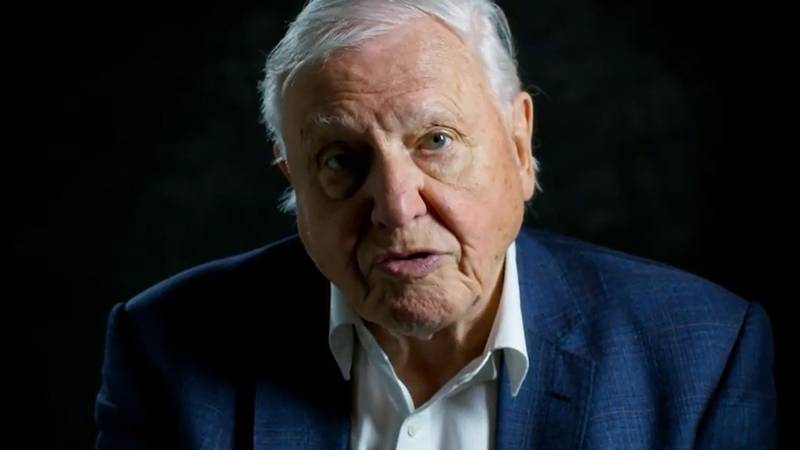 Sir David Attenborough Reveals He Punched The Air When Donald Trump Lost