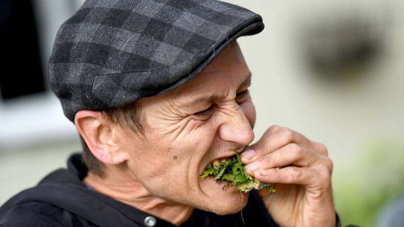 Man Claims World Record By Eating 54ft Of Stinging Nettles