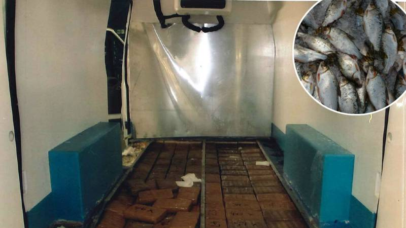 Police Seize £10 Million Of Cocaine Hidden Inside Frozen Fish