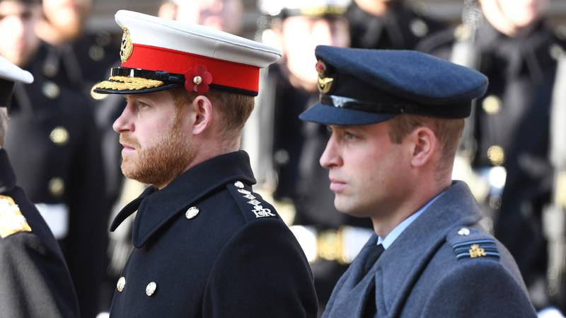 Prince Harry And Prince William Release Joint Statement Denying 'Bullying Claims'