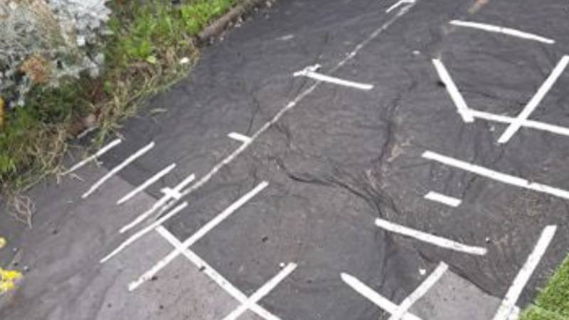 Woman Wakes Up To Find Lawn Missing From Her Garden