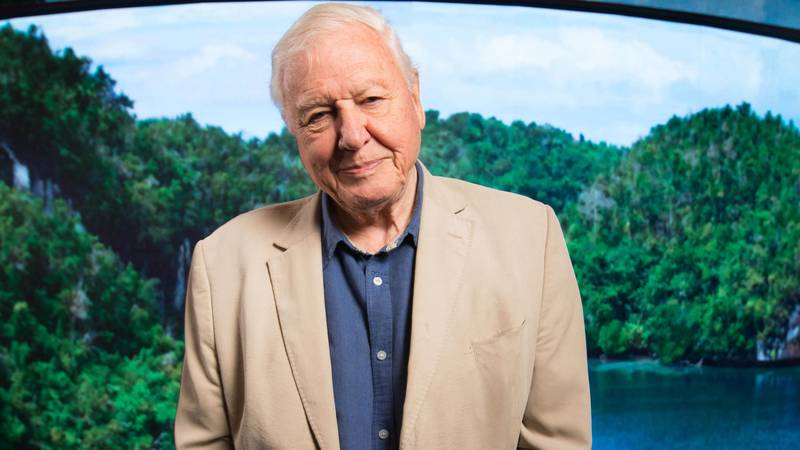 Sir David Attenborough Says He Won't Be Back On Instagram