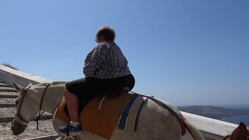 Distressing Images Show Greek Donkeys Forced To Carry Obese Tourists Uphill