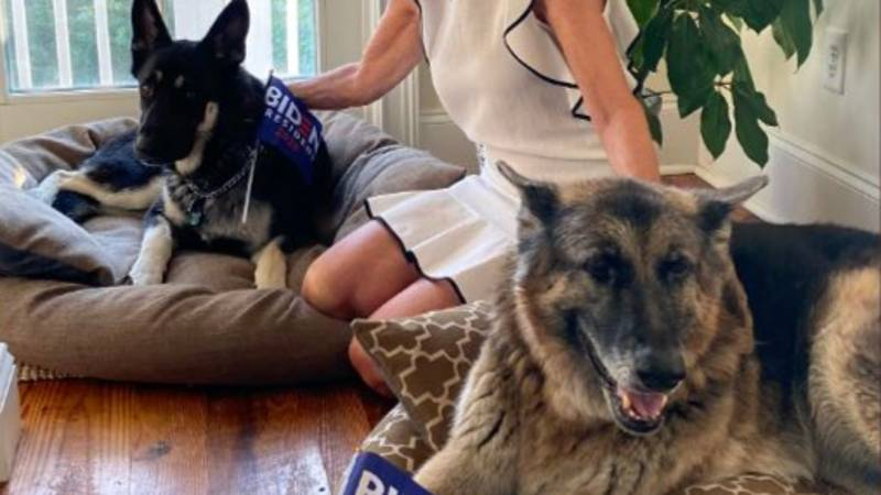 Joe Biden Poses With Rescue Dogs In White House Oval Office