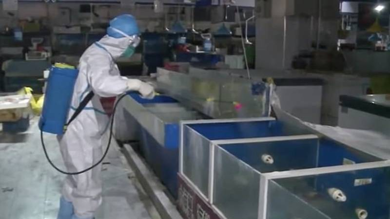 Rare Footage Shows Inside Of Beijing's Seafood Market