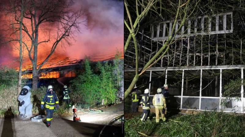 At Least 30 Animals Dead In New Year's Eve Fire At German Zoo