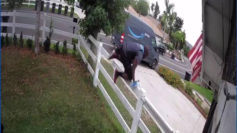 Amazon Delivery Driver Sprints And Leaps Over Fence After Seeing Huge Dog