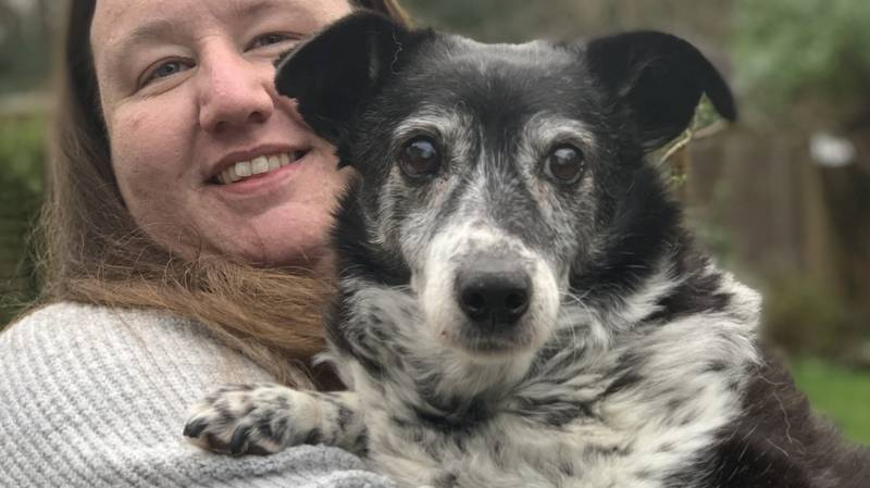 Britain's Oldest Dog Is Still Going Strong At 21