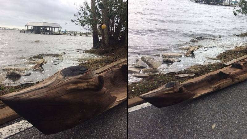 Man Discovers 'Centuries Old' Canoe Following Hurricane Irma