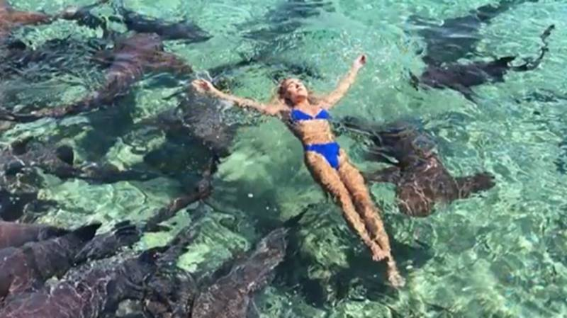 Instagram Model Bitten By A Shark While Trying To Take Pictures