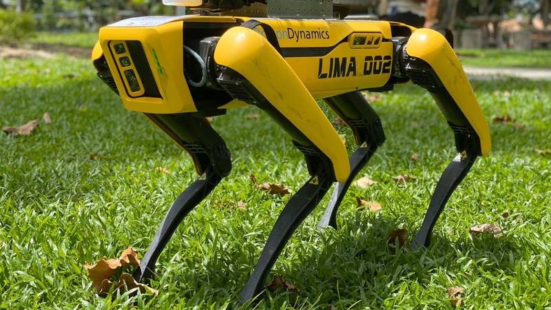 'Robodog' Is Patrolling Parks In Singapore To Help Enforce Social Distancing