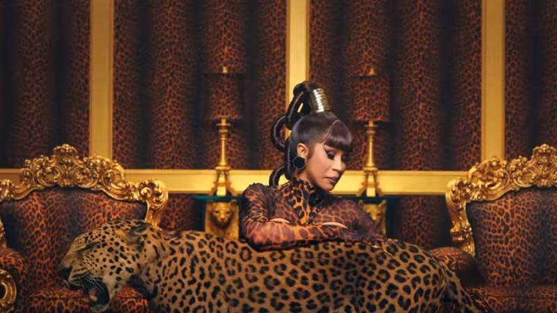 Carole Baskin Slams Use Of Big Cats In Cardi B WAP Music Video