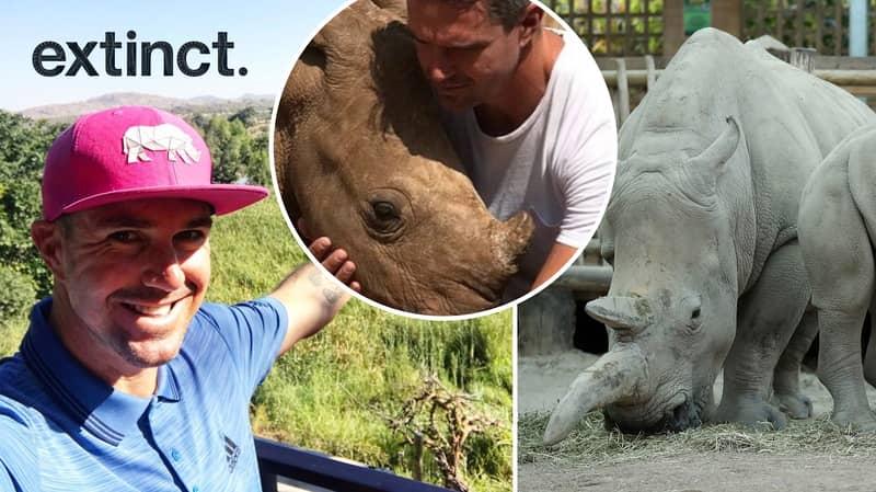 Kevin Pietersen: Rhino Extinction Isn't Going To Happen, Not On My Clock