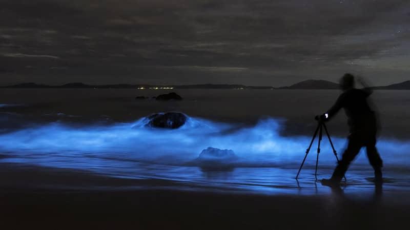 Timelapse Video Shows Electric Blue Waves Lighting Up Australian Beach