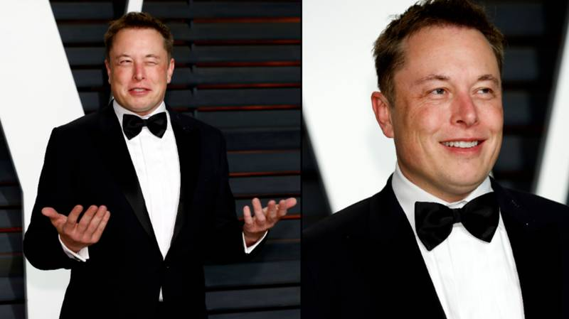 Diver Who Helped With Thailand Rescue Sues Elon Musk After 'Pedo' Comment
