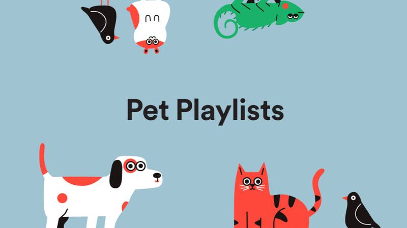 Spotify Has Revealed New Playlist For Pets Feature