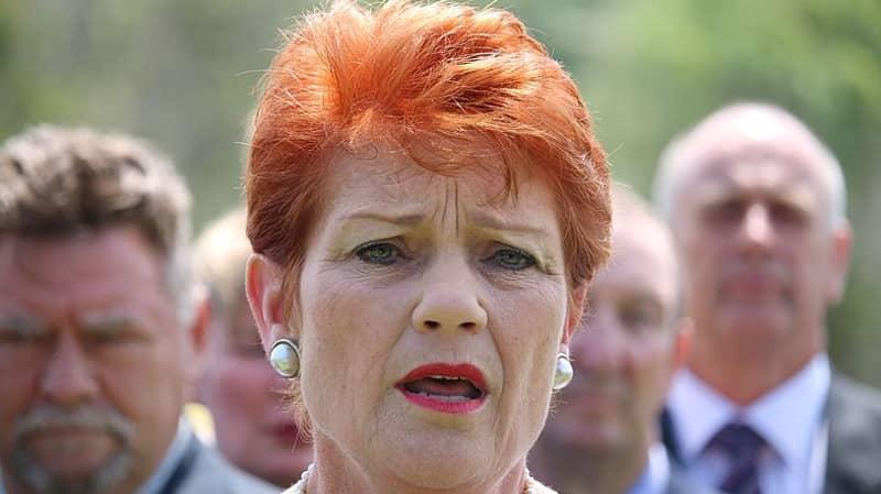 Pauline Hanson Calls For Nazi Symbols To Be Banned From Australia