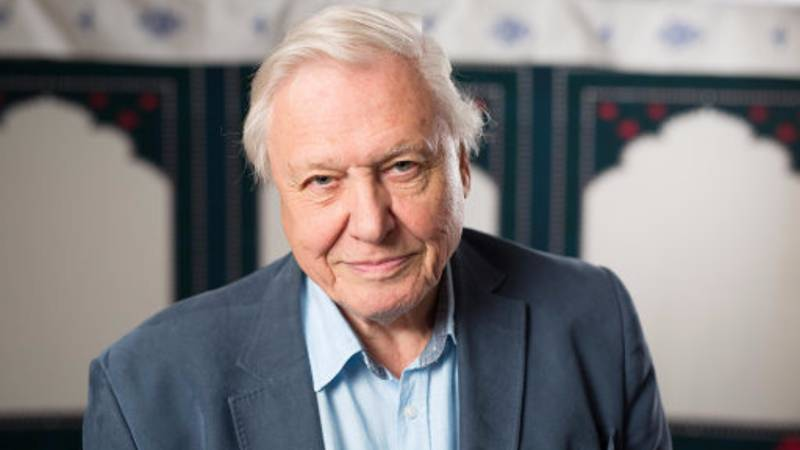 The BBC Has Another Huge Documentary From Sir David Attenborough Ready for 2018