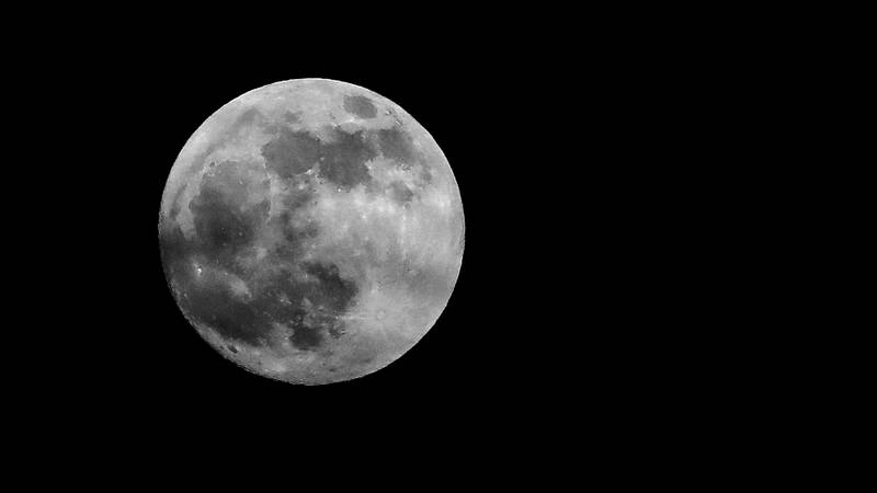 You Can Catch The First Wolf Moon Of The Decade Tonight