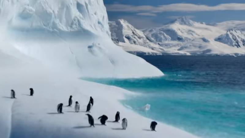 First 'Our Planet' Trailer Drops For David Attenborough's New Netflix Documentary