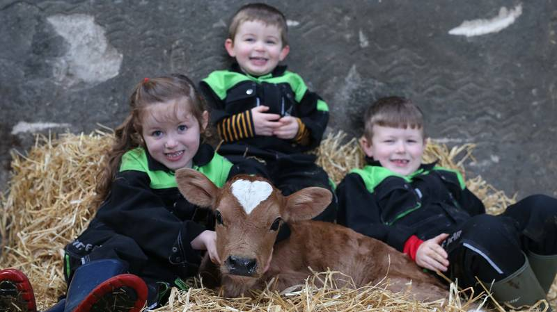 Calf Born On Valentine's Day With Perfect Heart-Shaped Mark On Its Head