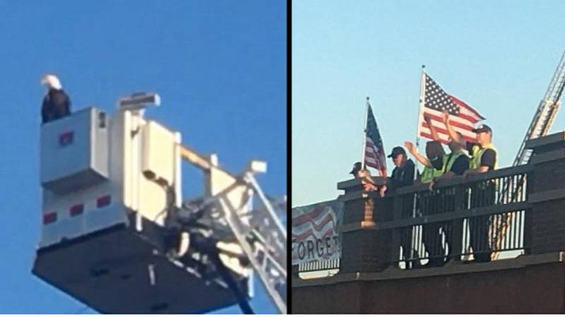 Eagle Lands On Top Of 9/11 Tribute On 17th Anniversary Of The Attacks