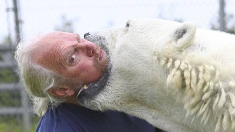 ​The Only Man In The World Who Can Swim With A Polar Bear
