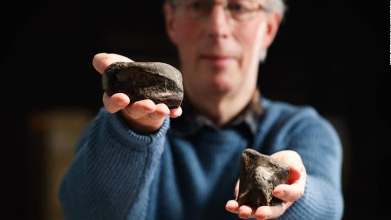 The first ever dinosaur fossils to be found in Ireland have been identified