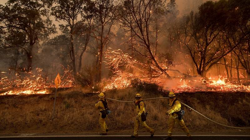 Fire Services Battle Blazes As California Experiences Devastating Wildfires