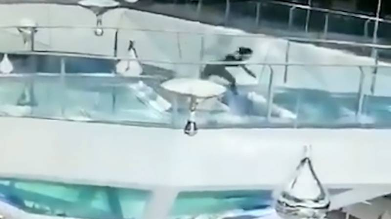 Woman Falls Into Shopping Centre Shark Tank During Feeding Time