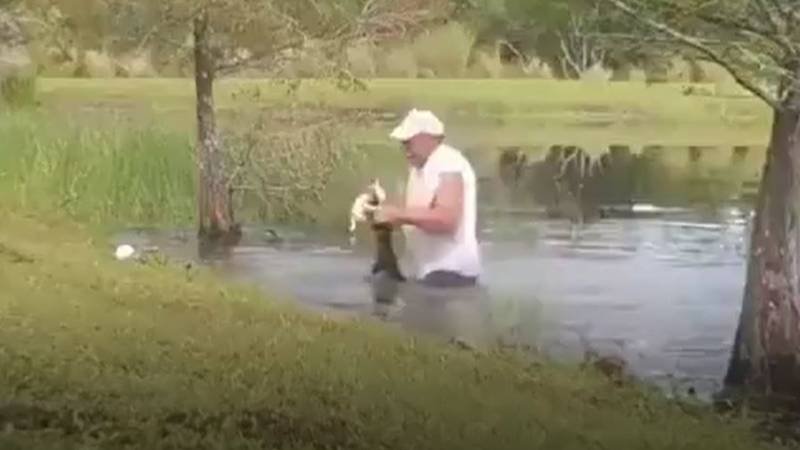 Man Jumps Into Water After Alligator Snatches His Dog